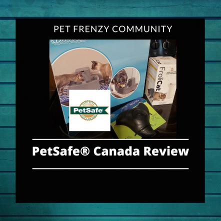 PetSafe® Canada Toys For Your Cat And Dog