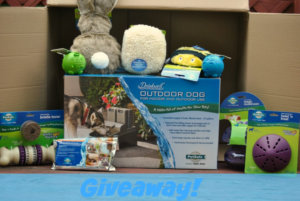Drinkwell Outdoor Dog Fountain By PetSafe Giveaway + More!