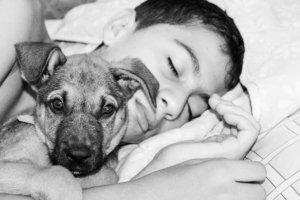 What To Expect Your First Night With Your Rescue Dog
