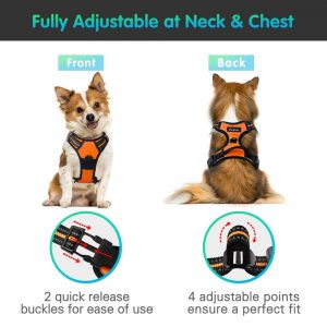 Image of an adjustable harness. link to purchase on amazon