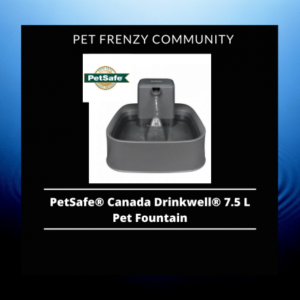 Review on PetSafe Canada Drinkwell 7.5 L Pet Fountain