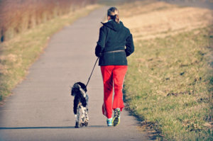 Keeping You and Your Dog Active